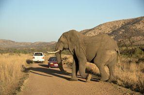 Inchirieri auto Klerksdorp, Africa de Sud