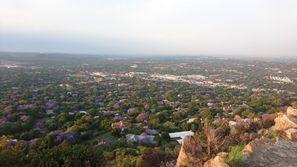 Inchirieri auto Rosebank, Africa de Sud