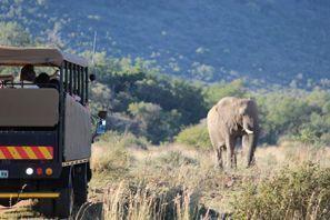 Inchirieri auto Vryburg, Africa de Sud