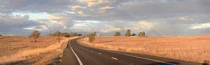 Inchirieri auto Gunnedah, Australia