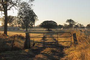 Inchirieri auto Morayfield, Australia