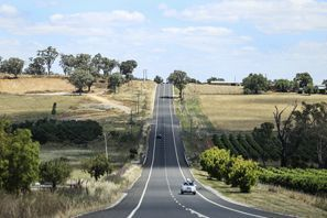 Inchirieri auto Mudgee, Australia