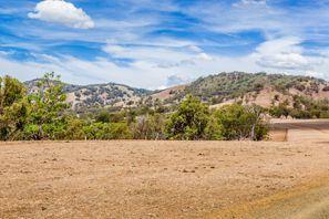 Inchirieri auto Muswellbrook, Australia