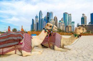 Inchirieri auto Emiratele Arabe Unite - E.A.U