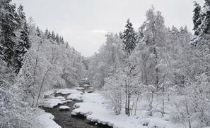 Inchirieri auto Nurmijarvi, Finlanda